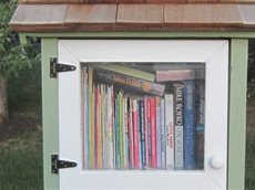 Little free library Dallas